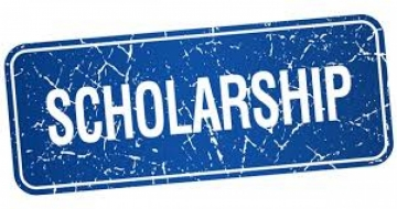 Conference Scholarships are available